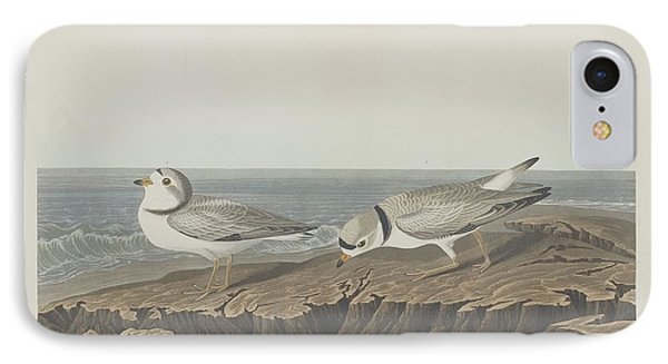 Piping Plover IPhone Case by Dreyer Wildlife Print Collections