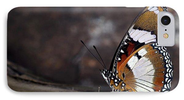 Plain Tiger Butterfly IPhone Case by JT Lewis