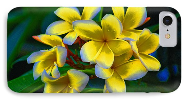 IPhone Case featuring the photograph 1- Plumeria Perfection by Joseph Keane