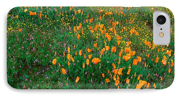 Poppies And Wildflowers, Antelope IPhone Case by Panoramic Images