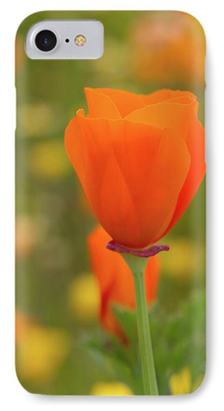 IPhone Case featuring the photograph Poppy by Roger Mullenhour