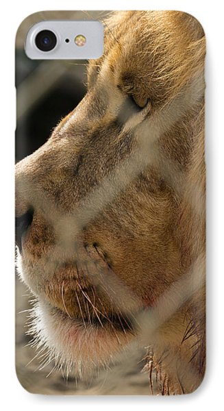 Profile Of A King IPhone Case by Travis Rogers