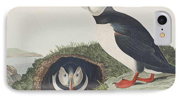 Puffin IPhone Case by John James Audubon