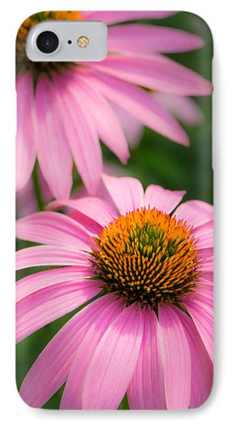 Purple Coneflower IPhone Case by Jim Hughes