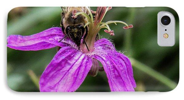 Purple Flower 3 IPhone Case