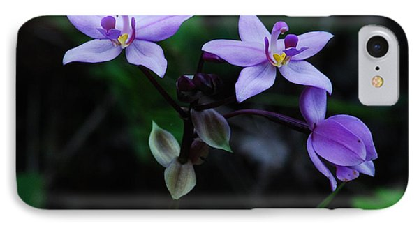 Purple Orchids 2 IPhone Case