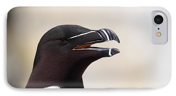 Razorbill Portrait IPhone Case by Bruce J Robinson