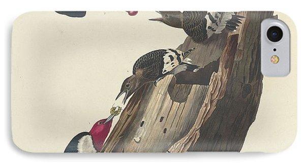 Red-headed Woodpecker IPhone 7 Case by Anton Oreshkin