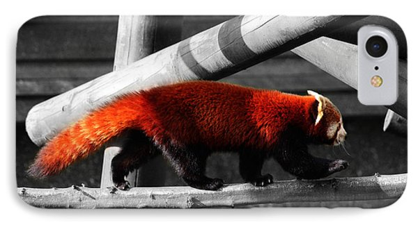 Red Panda IPhone Case by Martin Newman