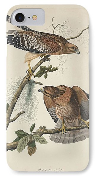 Red Shouldered Hawk IPhone 7 Case by Anton Oreshkin