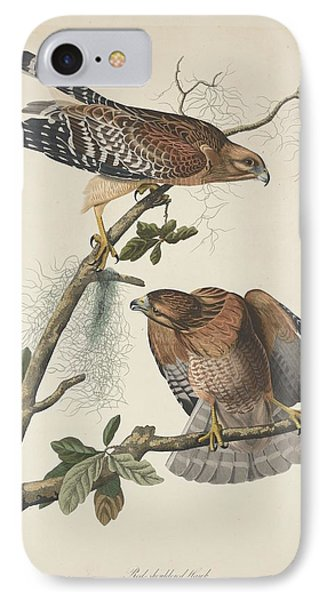 Red Shouldered Hawk IPhone Case by Anton Oreshkin