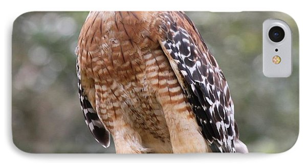 Red Shouldered Hawk IPhone Case by Theresa Willingham
