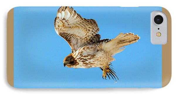 Red-tail Flight IPhone Case