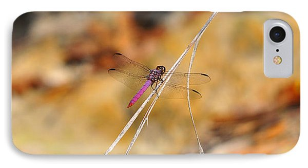 IPhone Case featuring the photograph Fuchsia Fly by Al Powell Photography USA