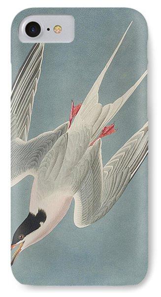 Roseate Tern IPhone Case by John James Audubon