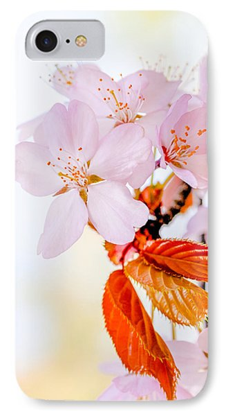 IPhone Case featuring the photograph Sakura - Japanese Cherry Blossom by Alexander Senin