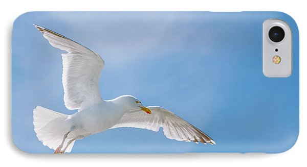 Seagull Flying High IPhone Case