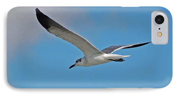 IPhone Case featuring the photograph 1- Seagull by Joseph Keane