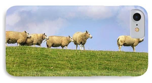 IPhone Case featuring the photograph Sheep On Dyke by Patricia Hofmeester