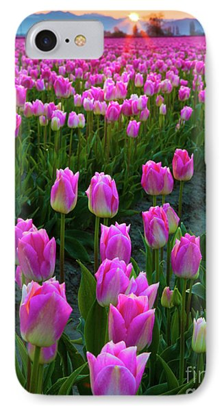 Skagit Valley Dawn IPhone Case by Inge Johnsson