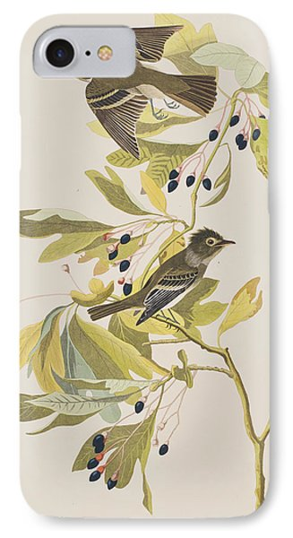 Small Green Crested Flycatcher IPhone 7 Case by John James Audubon