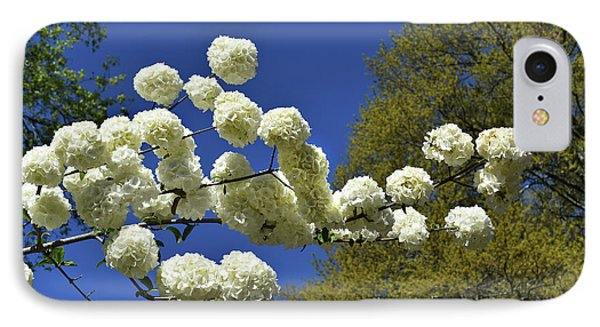 IPhone Case featuring the photograph Snowballs by Skip Willits