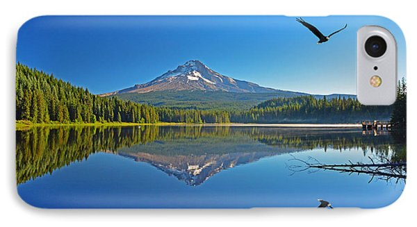 IPhone Case featuring the photograph Soaring Bald Eagle by Jack Moskovita
