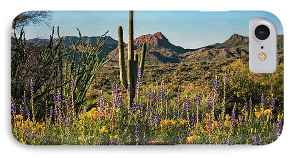IPhone Case featuring the photograph Spring In The Sonoran  by Saija Lehtonen
