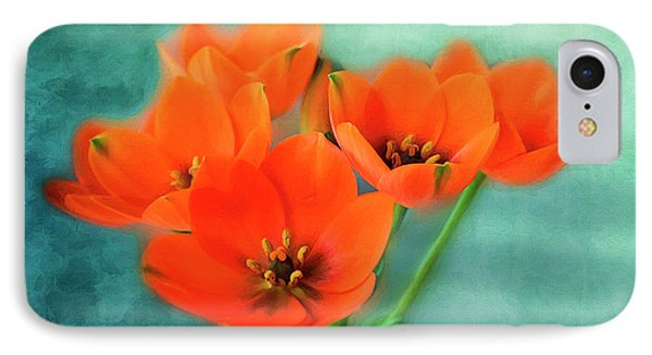 IPhone Case featuring the photograph Star Of Bethlehem by Jutta Maria Pusl