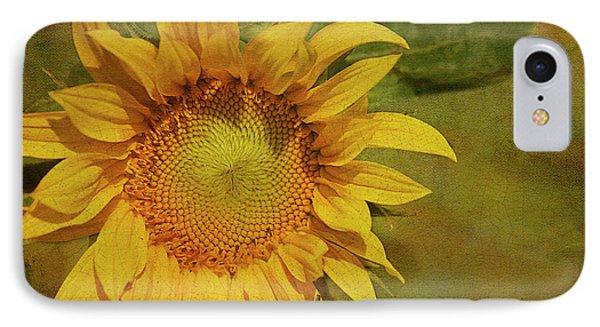 Sunflower iPhone 7 Case - Sunflower by Cindi Ressler