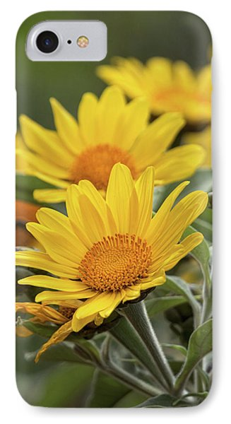 IPhone Case featuring the photograph Sunflowers  by Saija Lehtonen
