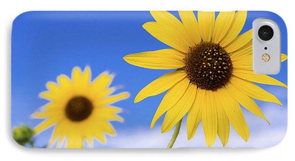 Sunflower iPhone 7 Case - Sunshine by Chad Dutson
