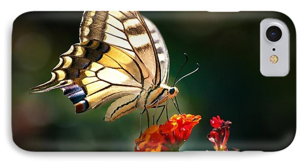 Swallowtail IPhone Case by Meir Ezrachi
