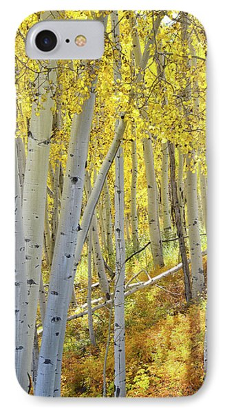 IPhone Case featuring the photograph Telluride Aspens by Ray Mathis