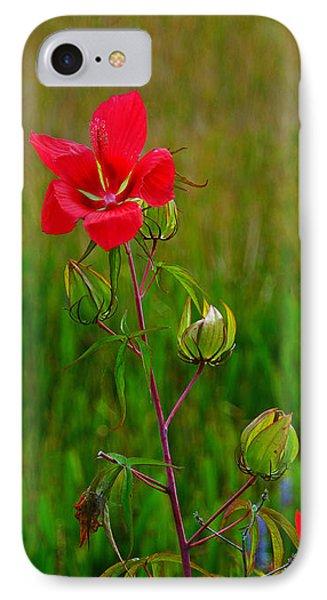 Texas Star Hibiscus IPhone Case