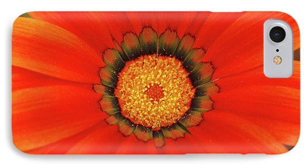 The Beauty Of Orange IPhone Case by Lori Tambakis