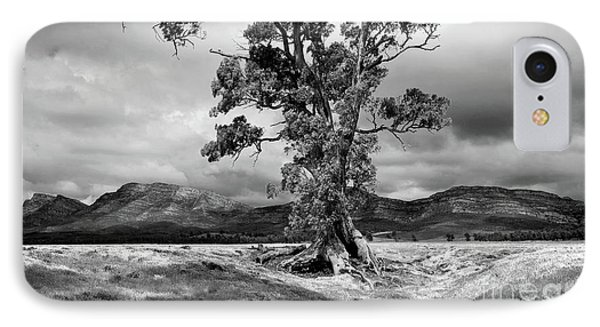 IPhone Case featuring the photograph The Cazneaux Tree by Bill Robinson