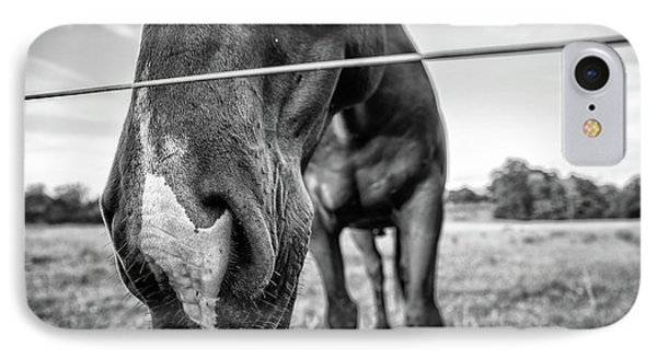 the Horses of Blue Ridge 4 IPhone Case by Blake Yeager