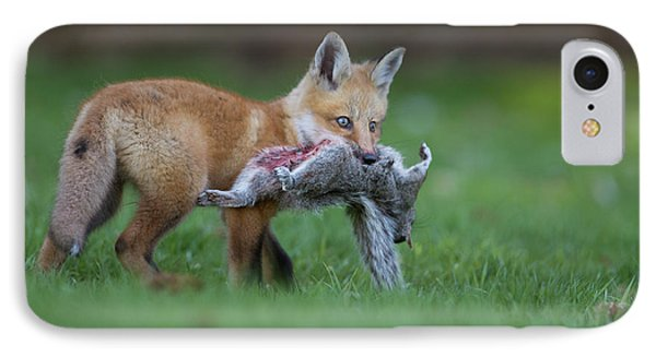 The Little Hunter IPhone Case by Mircea Costina Photography