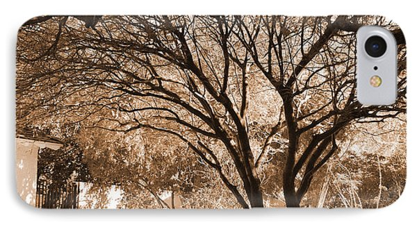 IPhone Case featuring the photograph The Lonely Bench by Donna Greene