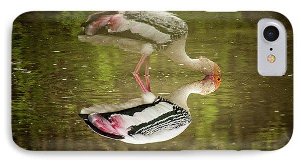 The Painted Stork  Mycteria Leucocephala  IPhone Case