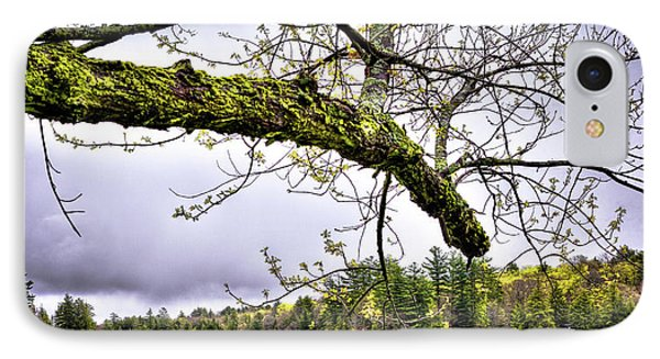 The Pond In Old Forge IPhone 7 Case by David Patterson