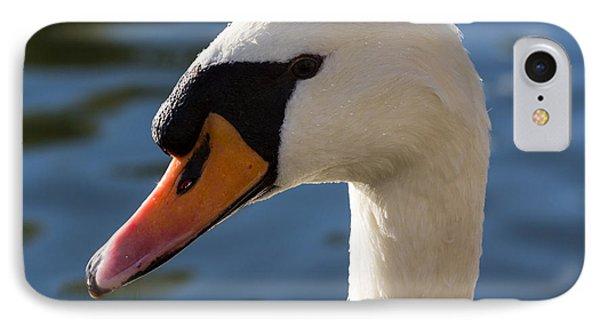 The Watchful Swan IPhone Case by David Pyatt