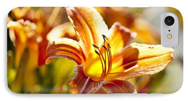 Tiger Lily Flower Phone Case by Elena Elisseeva