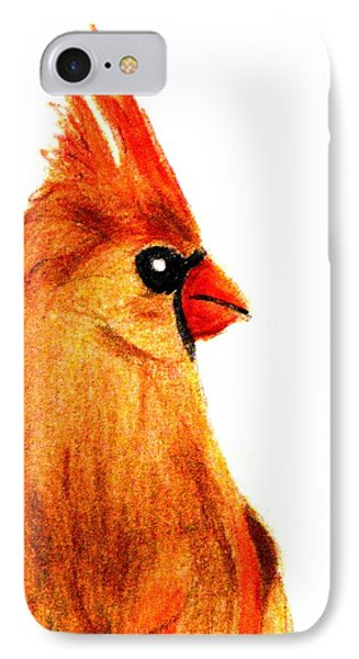 Birds Of A Feather Phone Case by Angela Davies