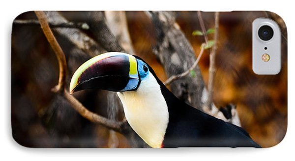 Toucan IPhone Case by Daniel Precht