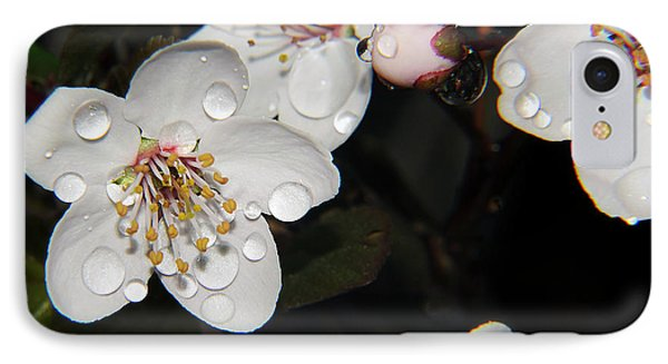 IPhone Case featuring the photograph Tree Blossoms by Elvira Ladocki