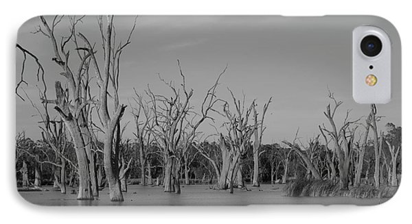 IPhone Case featuring the photograph Tree Cemetery by Douglas Barnard