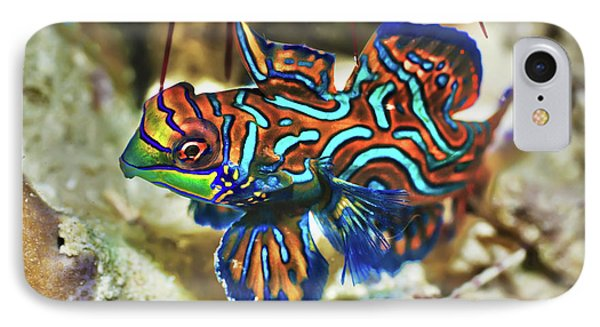 Tropical Fish Mandarinfish Phone Case by MotHaiBaPhoto Prints
