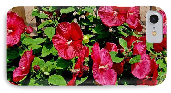 Tropical Red Hibiscus Bush IPhone Case by Marsha Heiken